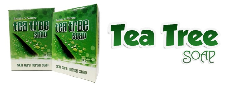 Soap Tea Tree Herbal UPS unified products services negosyo business franchise home based Philippines